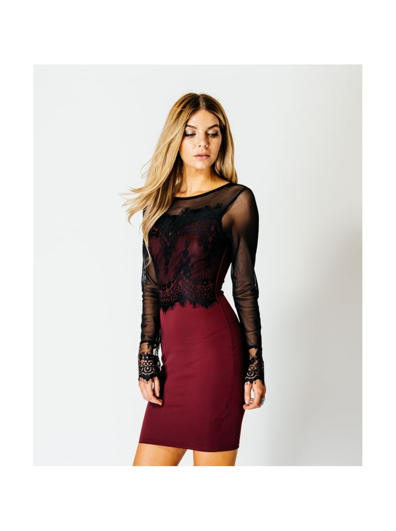 Adrienne Contrast Long Sleeve Lace Mesh Bodycon Dress